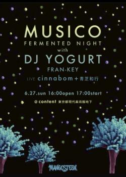 MUSICO 4